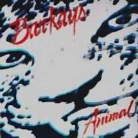 barkays-1989-animal