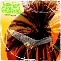 brooklyn funk essentials-2008-watcha playin
