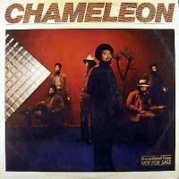 chameleon-1979-chameleon