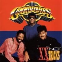 commodores-1993-xx no tricks