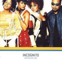 incognito-2003-who needs love