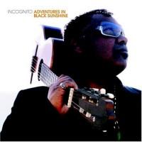 incognito-2004-adventures in black sunshine