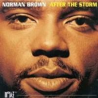 norman brown-1994-after the storm