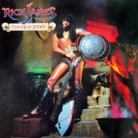 rick james-1982-throwin  down