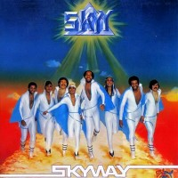 skyy-1980-skyway